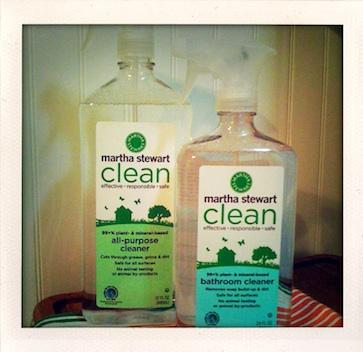 MS Clean sm